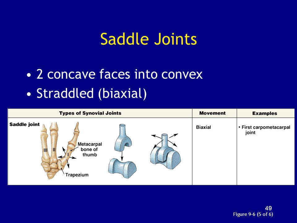 Saddle Joints 2 concave faces into convex Straddled (biaxial) Figure 9–6 (5 of 6) 49