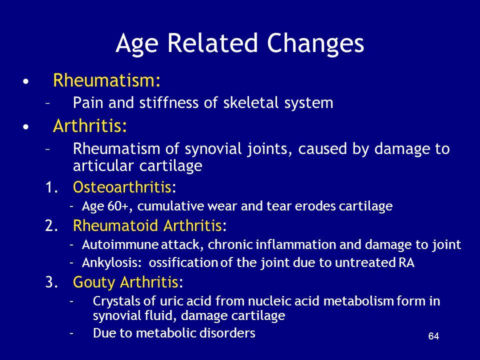 Age Related Changes Rheumatism: –Pain and stiffness of skeletal system Arthritis: –Rheumatism of synovial joints, caused by damage to articular cartilage 1.Osteoarthritis: - Age 60+, cumulative wear and tear erodes cartilage 2.Rheumatoid Arthritis: - Autoimmune attack, chronic inflammation and damage to joint - Ankylosis: ossification of the joint due to untreated RA 3.Gouty Arthritis: -Crystals of uric acid from nucleic acid metabolism form in synovial fluid, damage cartilage -Due to metabolic disorders 64