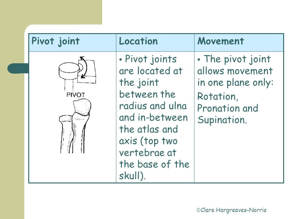  Clare Hargreaves-Norris Gliding jointLocationMovement  The gliding joint is found in the foot, between the tarsals and in the hand, among the carpals.