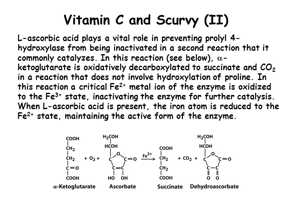Vitamin C and Scurvy (II) L-ascorbic acid plays a vital role in preventing prolyl 4- hydroxylase from being inactivated in a second reaction that it c