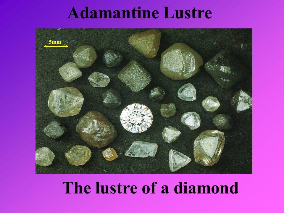 Adamantine Lustre The lustre of a diamond 5mm