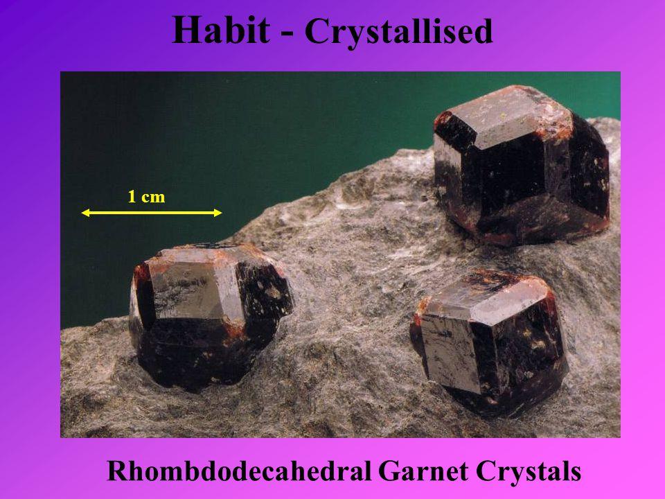 Habit - Crystallised 1 cm Rhombdodecahedral Garnet Crystals
