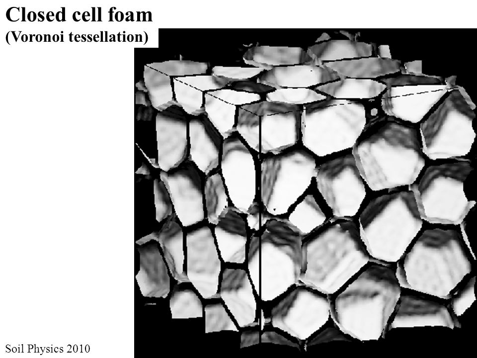 Closed cell foam (Voronoi tessellation) Soil Physics 2010