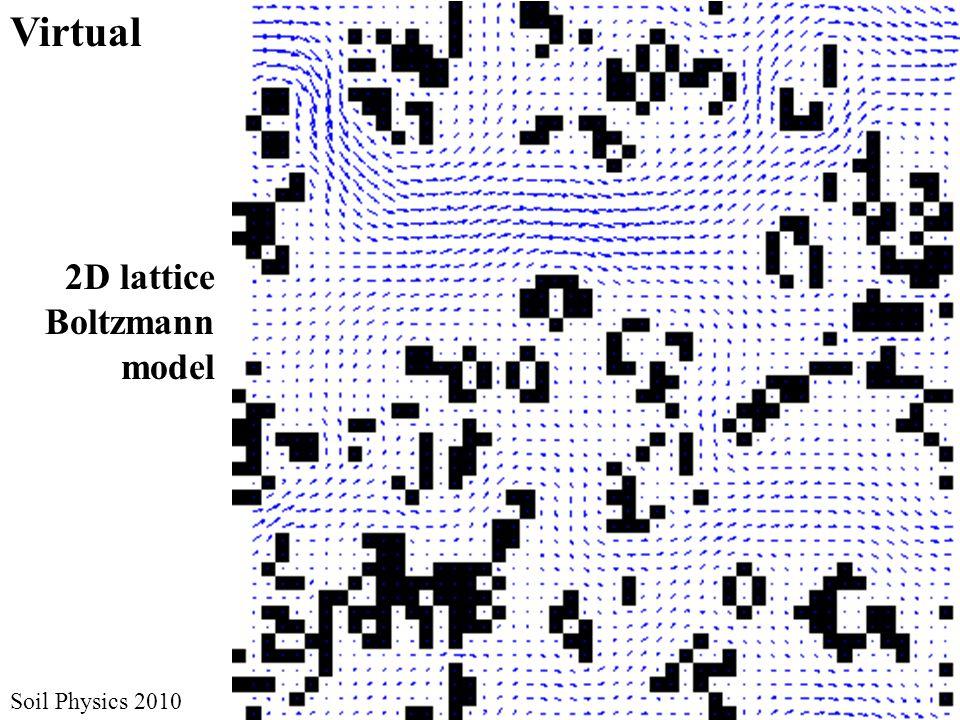 2D lattice Boltzmann model Virtual Soil Physics 2010