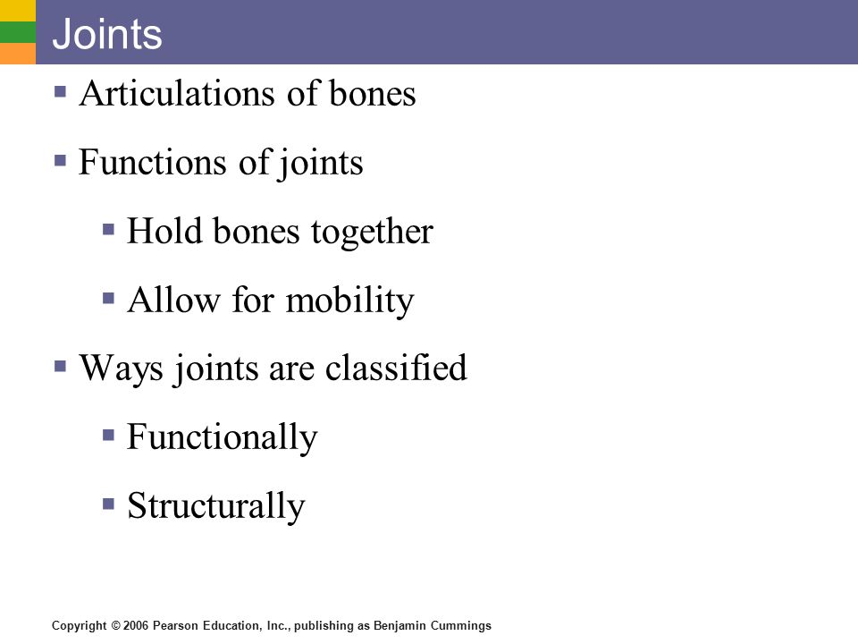 Copyright © 2006 Pearson Education, Inc., publishing as Benjamin Cummings Joints  Articulations of bones  Functions of joints  Hold bones together  Allow for mobility  Ways joints are classified  Functionally  Structurally