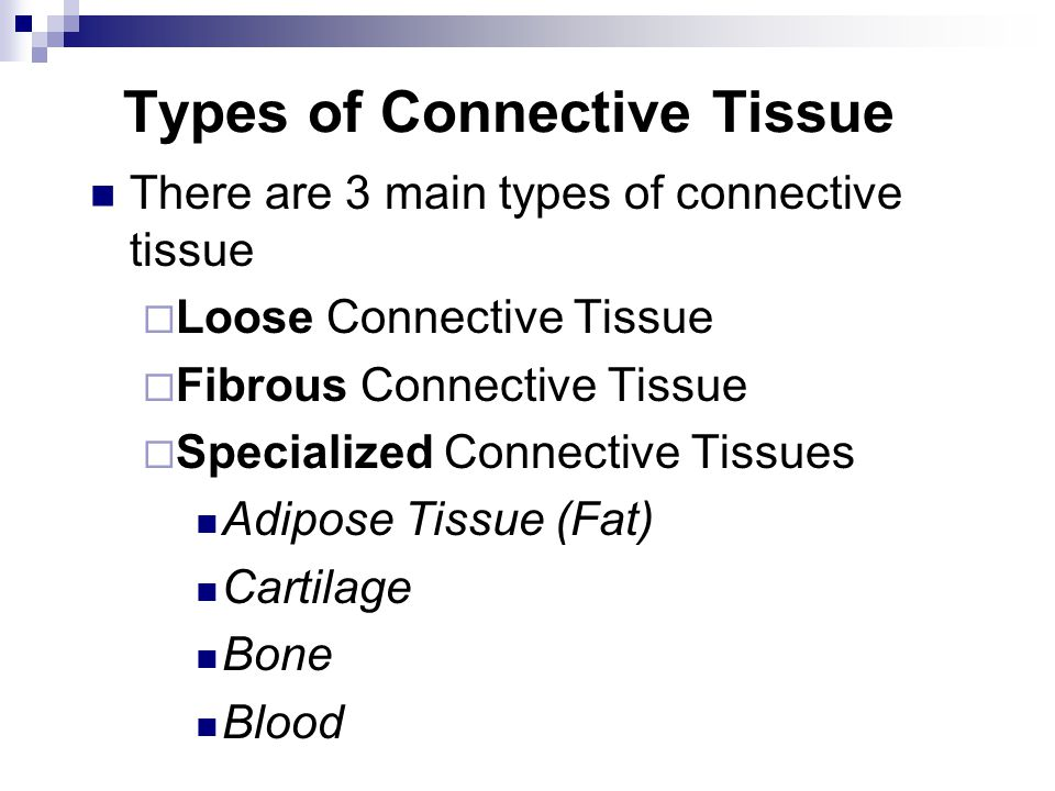 Types of Connective Tissue There are 3 main types of connective tissue  Loose Connective Tissue  Fibrous Connective Tissue  Specialized Connective Tissues Adipose Tissue (Fat) Cartilage Bone Blood