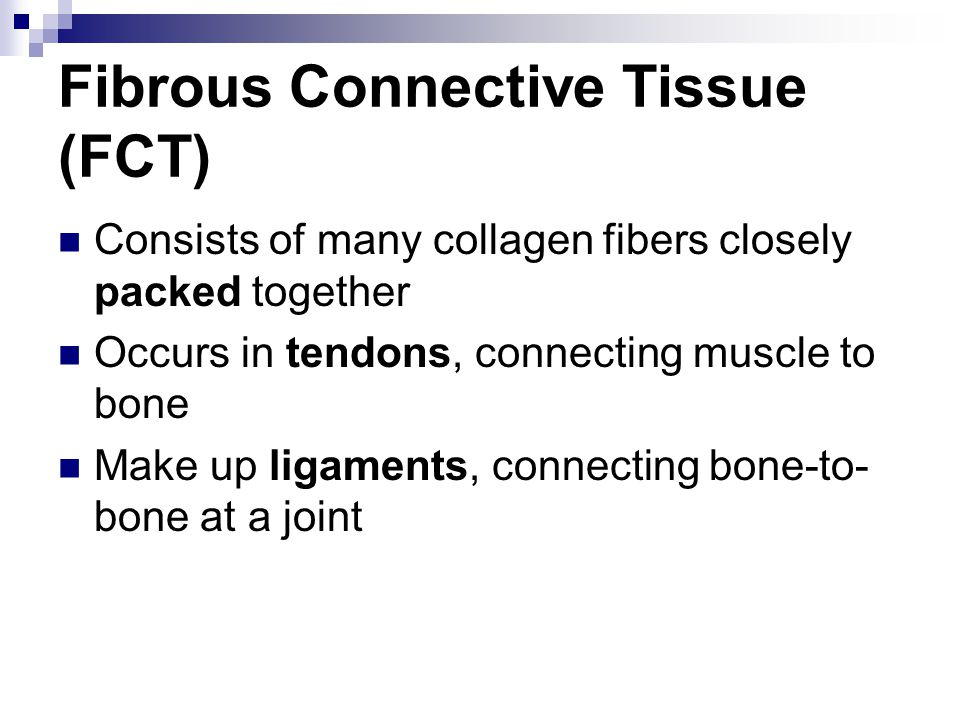 Fibrous Connective Tissue (FCT) Consists of many collagen fibers closely packed together Occurs in tendons, connecting muscle to bone Make up ligament