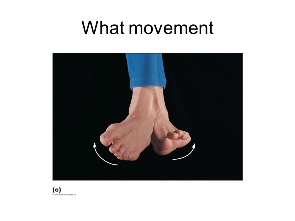 What movement