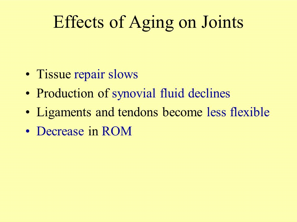Effects of Aging on Joints Tissue repair slows Production of synovial fluid declines Ligaments and tendons become less flexible Decrease in ROM