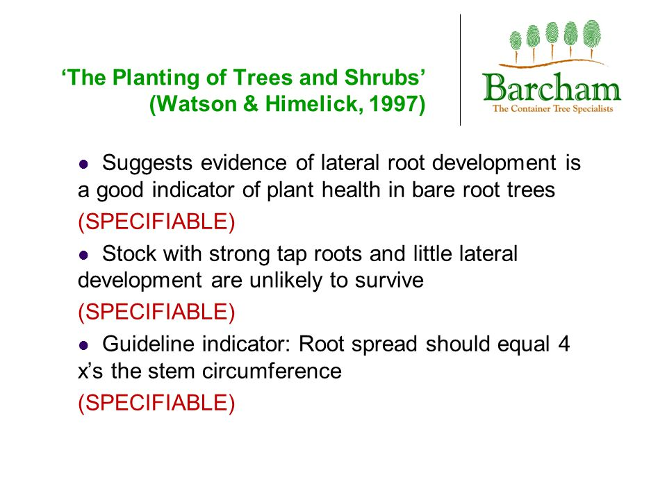 'The Planting of Trees and Shrubs' (Watson & Himelick, 1997) Suggests evidence of lateral root development is a good indicator of plant health in bare