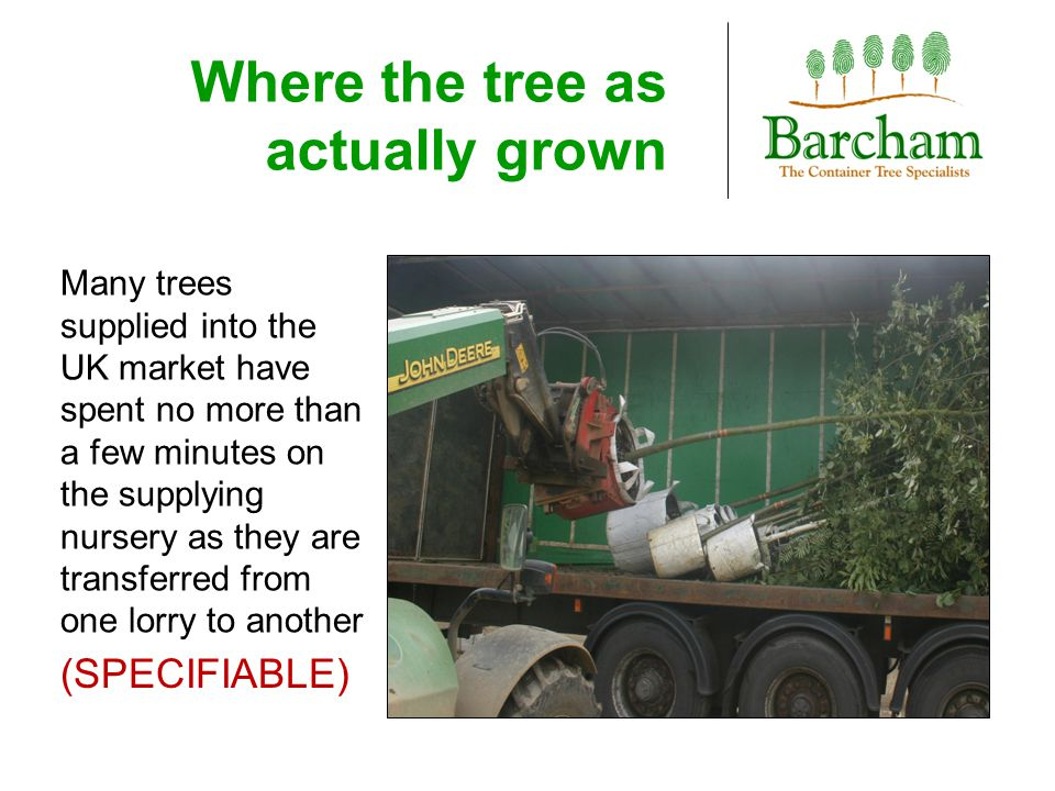 Where the tree as actually grown Many trees supplied into the UK market have spent no more than a few minutes on the supplying nursery as they are tra