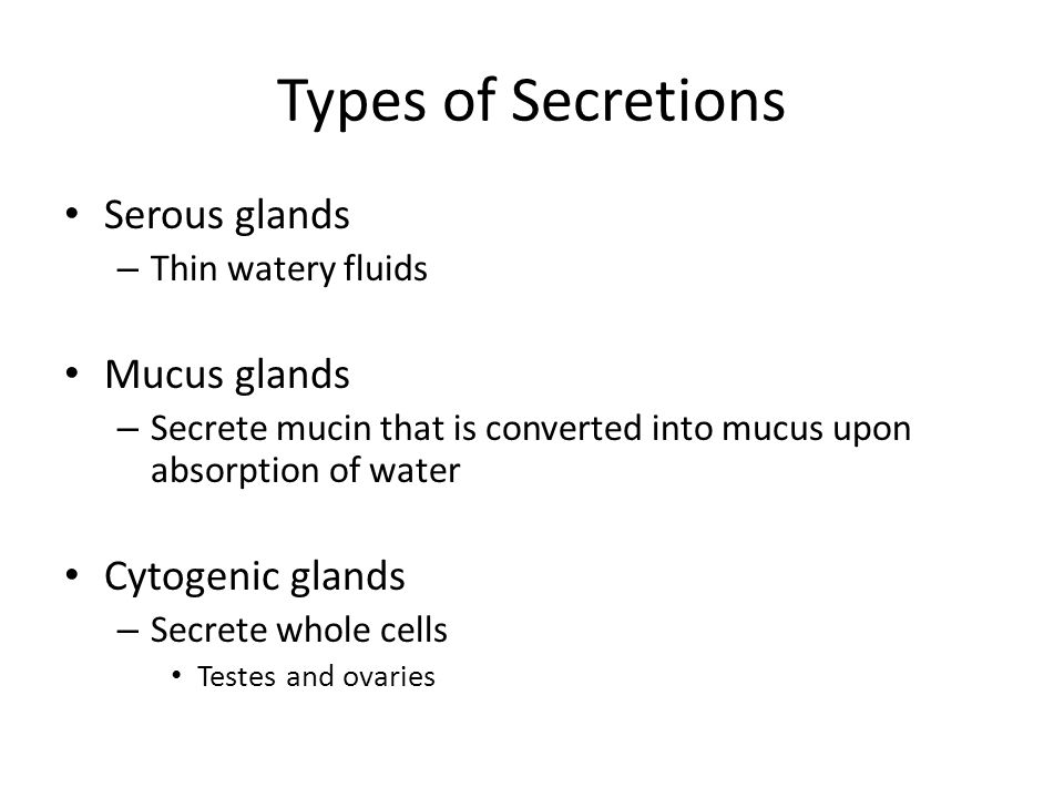 Types of Secretions Serous glands – Thin watery fluids Mucus glands – Secrete mucin that is converted into mucus upon absorption of water Cytogenic glands – Secrete whole cells Testes and ovaries