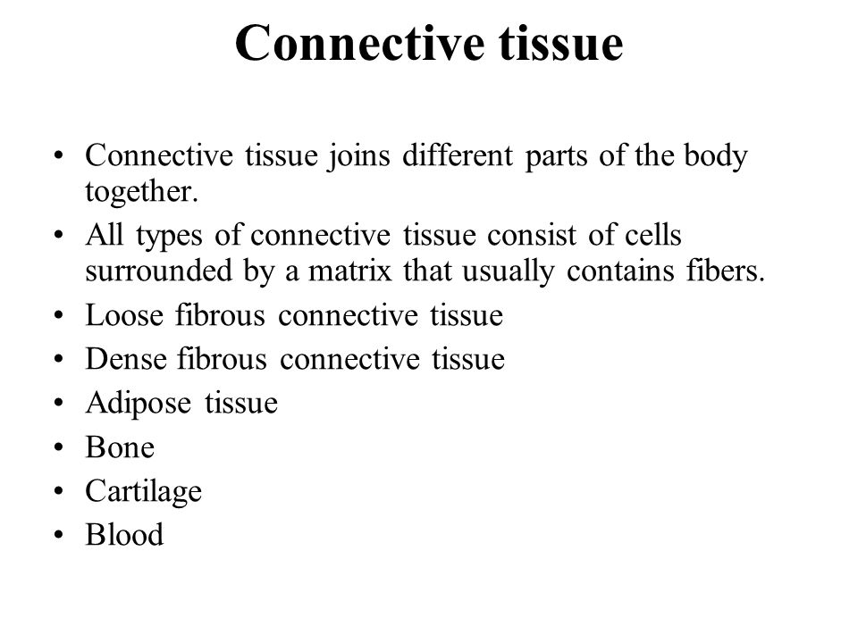 Connective tissue Connective tissue joins different parts of the body together.