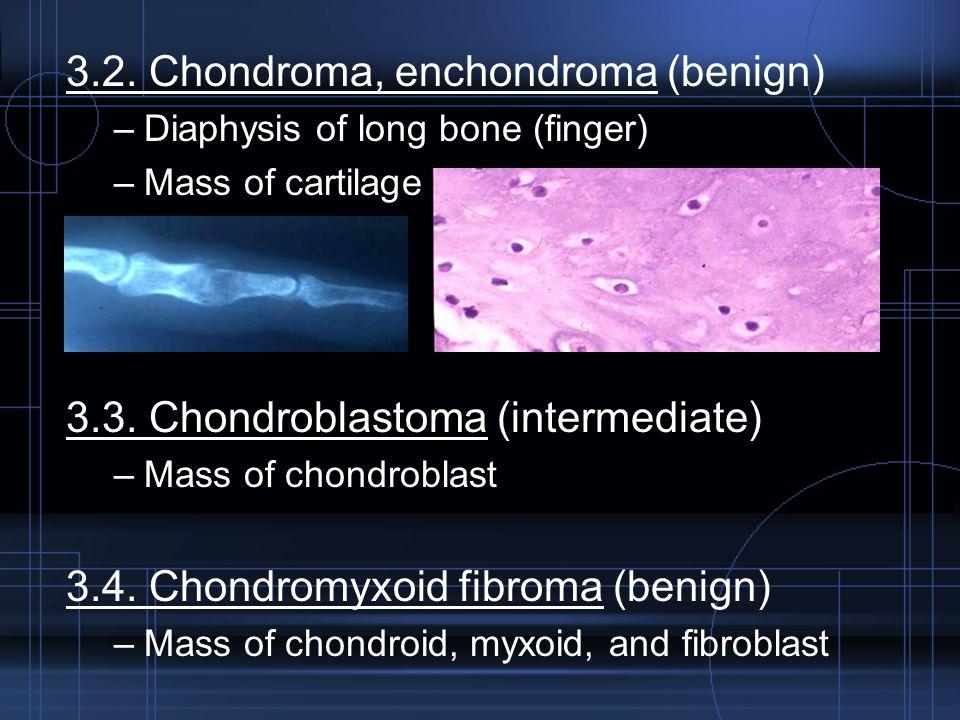 3.2. Chondroma, enchondroma (benign) –Diaphysis of long bone (finger) –Mass of cartilage 3.3. Chondroblastoma (intermediate) –Mass of chondroblast 3.4