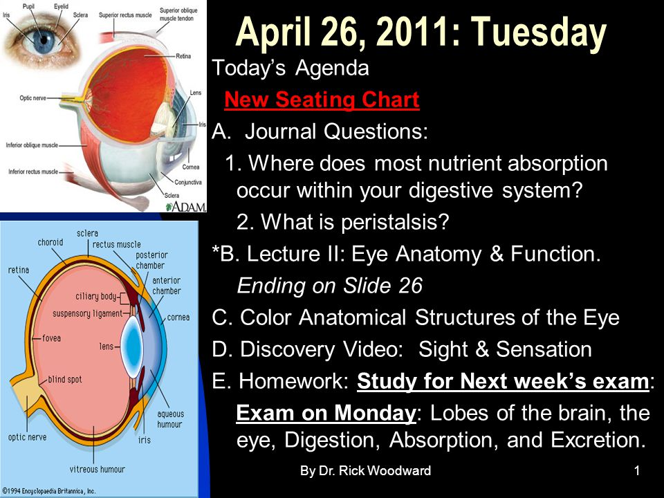 4/30/2015By Dr. Rick Woodward1 April 26, 2011: Tuesday Today's Agenda New Seating Chart A.