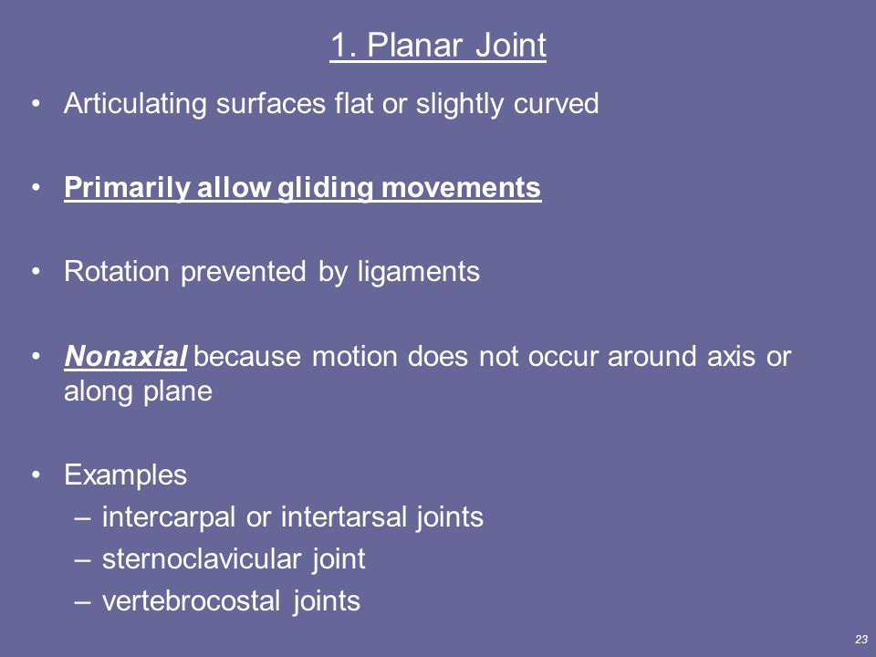 23 1. Planar Joint Articulating surfaces flat or slightly curved Primarily allow gliding movements Rotation prevented by ligaments Nonaxial because mo