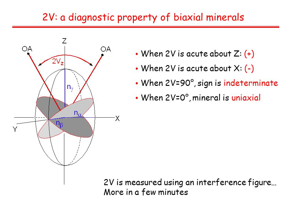 2V: a diagnostic property of biaxial minerals When 2V is acute about Z: (+) When 2V is acute about X: (-) When 2V=90°, sign is indeterminate When 2V=0°, mineral is uniaxial 2V is measured using an interference figure… More in a few minutes