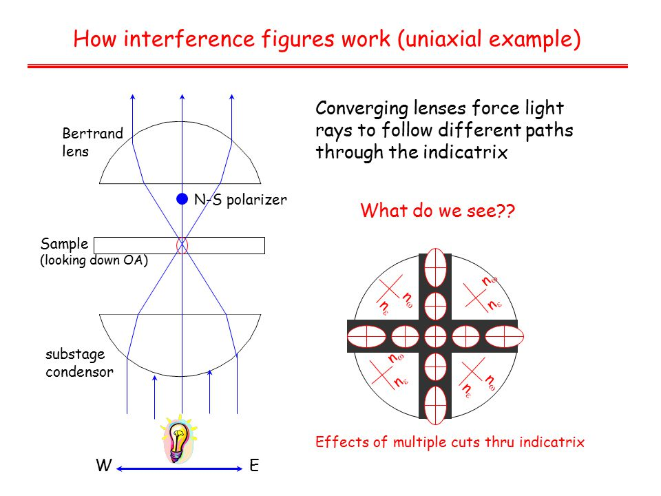 How interference figures work (uniaxial example) Bertrand lens Sample (looking down OA) substage condensor Converging lenses force light rays to follow different paths through the indicatrix WE N-S polarizer What do we see .