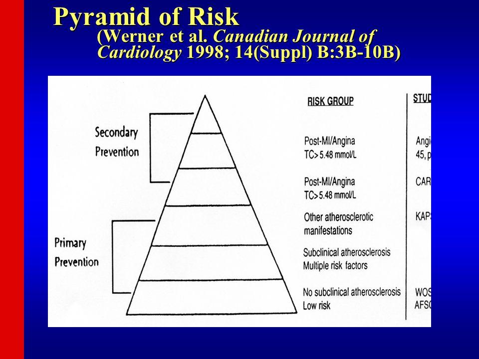 Pyramid of Risk (Werner et al.