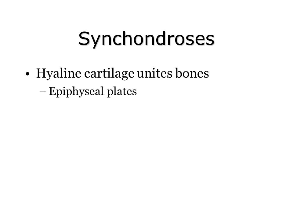 Synchondroses Hyaline cartilage unites bones –Epiphyseal plates
