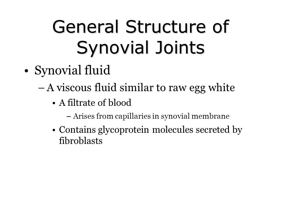 General Structure of Synovial Joints Synovial fluid –A viscous fluid similar to raw egg white A filtrate of blood –Arises from capillaries in synovial membrane Contains glycoprotein molecules secreted by fibroblasts