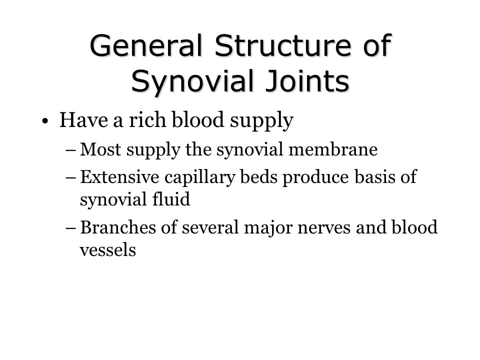 General Structure of Synovial Joints Have a rich blood supply –Most supply the synovial membrane –Extensive capillary beds produce basis of synovial f
