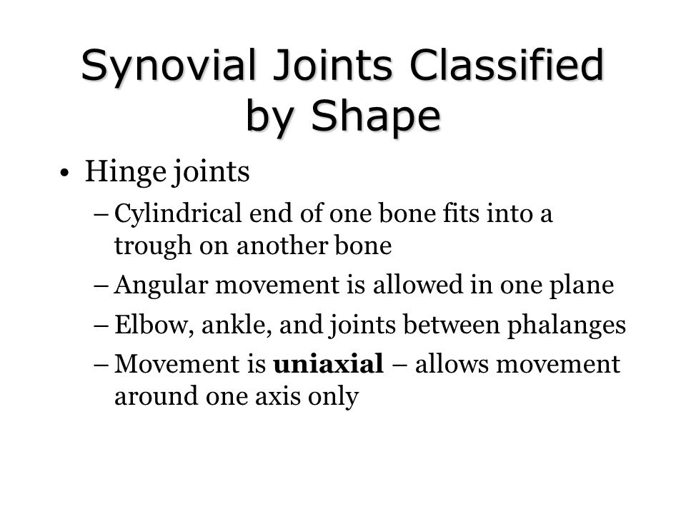 Synovial Joints Classified by Shape Hinge joints –Cylindrical end of one bone fits into a trough on another bone –Angular movement is allowed in one plane –Elbow, ankle, and joints between phalanges –Movement is uniaxial – allows movement around one axis only