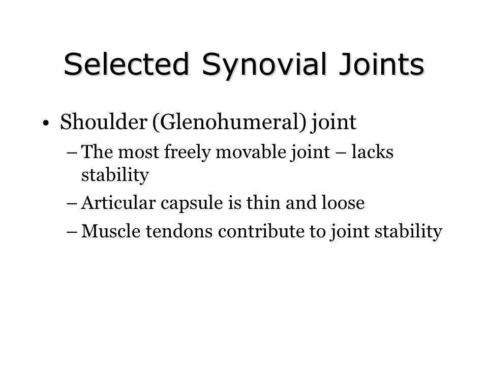 Selected Synovial Joints Shoulder (Glenohumeral) joint –The most freely movable joint – lacks stability –Articular capsule is thin and loose –Muscle tendons contribute to joint stability