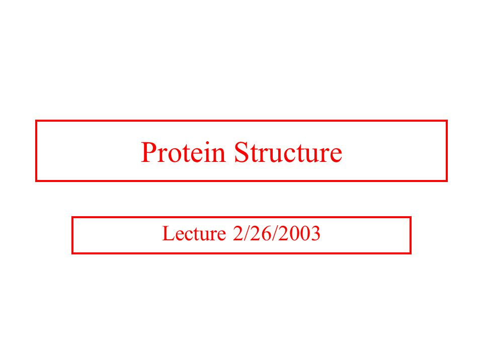 Protein Structure Lecture 2/26/2003