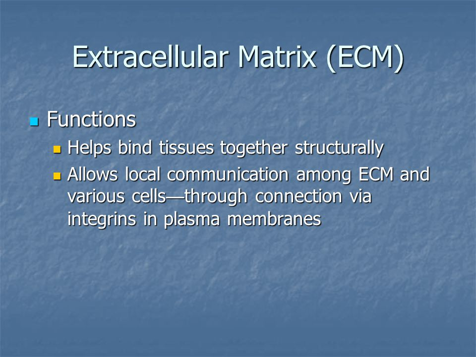 Extracellular Matrix (ECM) Components Components Water Water Proteins Proteins Structural proteins Structural proteins Collagen — strong, flexible protein fiber Collagen — strong, flexible protein fiber Elastin — elastic fibers Elastin — elastic fibers Includes glycoproteins — proteins with a few carbohydrate attachments Includes glycoproteins — proteins with a few carbohydrate attachments Glycoprotein attachments also allow local communication within a tissue Glycoprotein attachments also allow local communication within a tissue