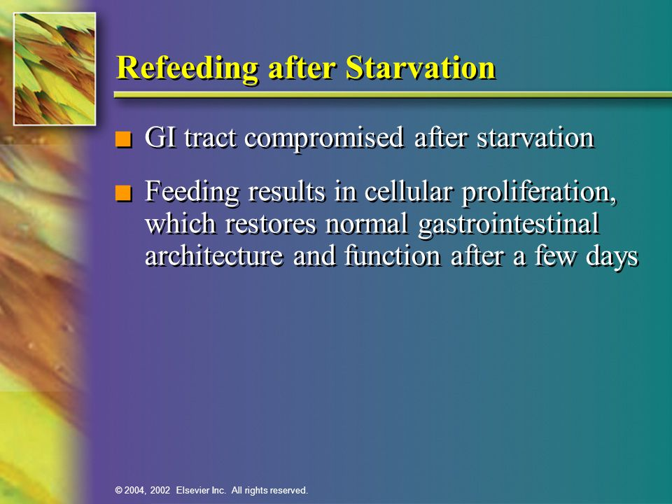 © 2004, 2002 Elsevier Inc. All rights reserved. Refeeding after Starvation n GI tract compromised after starvation n Feeding results in cellular proli