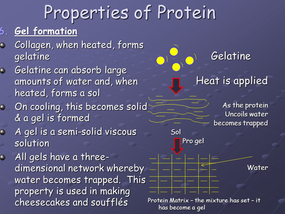 Properties of Protein 6.Gel formation Collagen, when heated, forms gelatine Gelatine can absorb large amounts of water and, when heated, forms a sol O