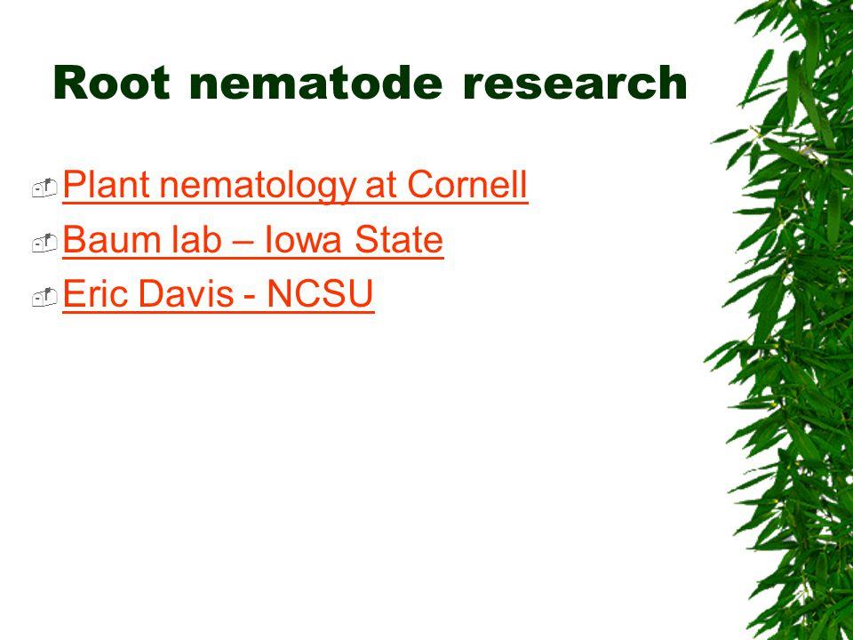 Root nematode research  Plant nematology at Cornell Plant nematology at Cornell  Baum lab – Iowa State Baum lab – Iowa State  Eric Davis - NCSU Eri