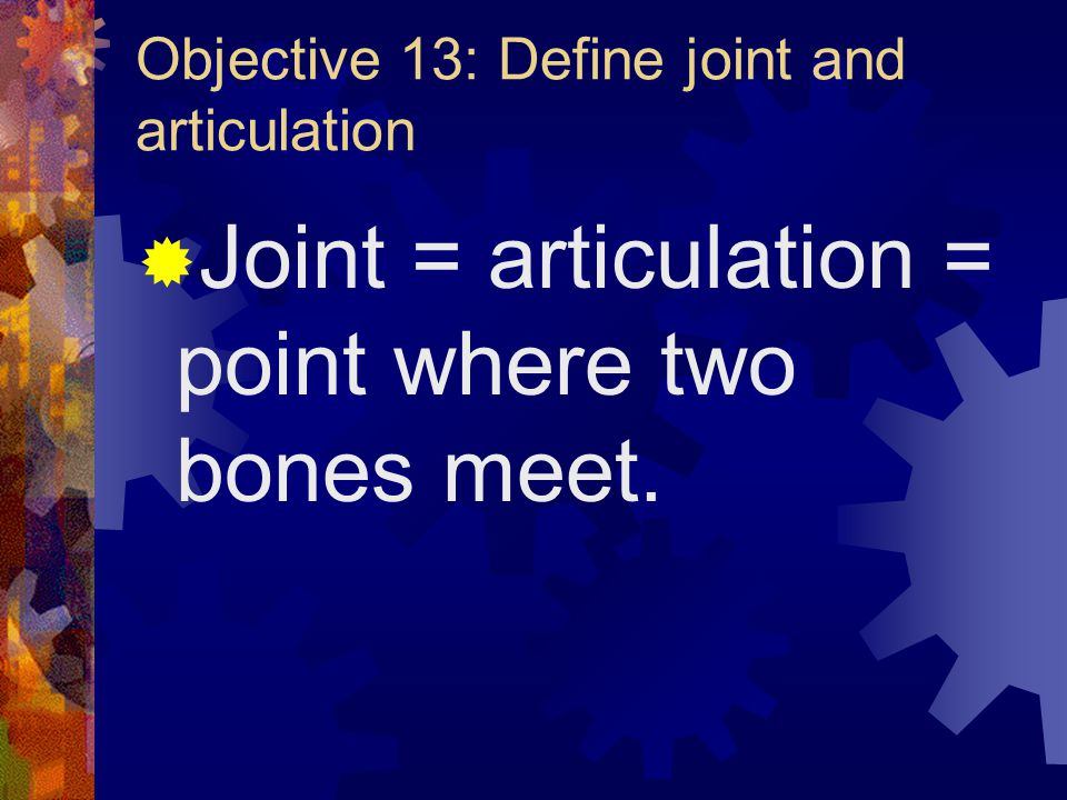 Today's Agenda  Objective 13 & 14  Notes on objectives 15 & 16  Match the joint with its description  Types of joints  Model types of joints