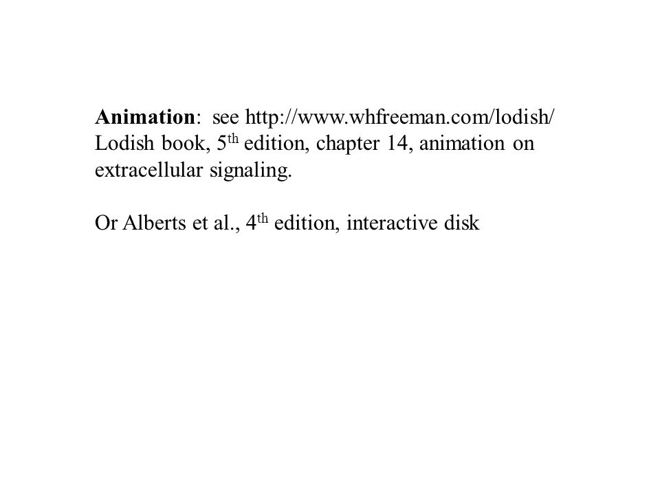 Animation: see http://www.whfreeman.com/lodish/ Lodish book, 5 th edition, chapter 14, animation on extracellular signaling. Or Alberts et al., 4 th e