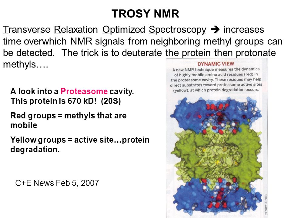 TROSY NMR Transverse Relaxation Optimized Spectroscopy  increases time overwhich NMR signals from neighboring methyl groups can be detected.