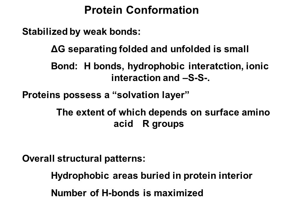 Protein Conformation Stabilized by weak bonds: ΔG separating folded and unfolded is small Bond: H bonds, hydrophobic interatction, ionic interaction and –S-S-.