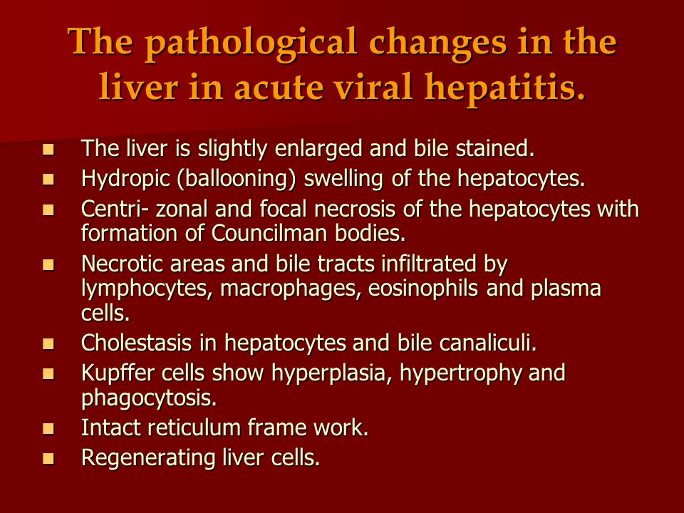 The pathological changes in the liver in acute viral hepatitis.