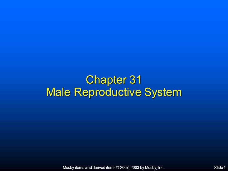 Mosby items and derived items © 2007, 2003 by Mosby, Inc.Slide 1 Chapter 31 Male Reproductive System