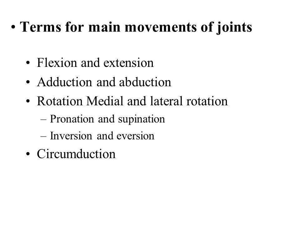 Flexion - extension dorsiflexion plantar flexion