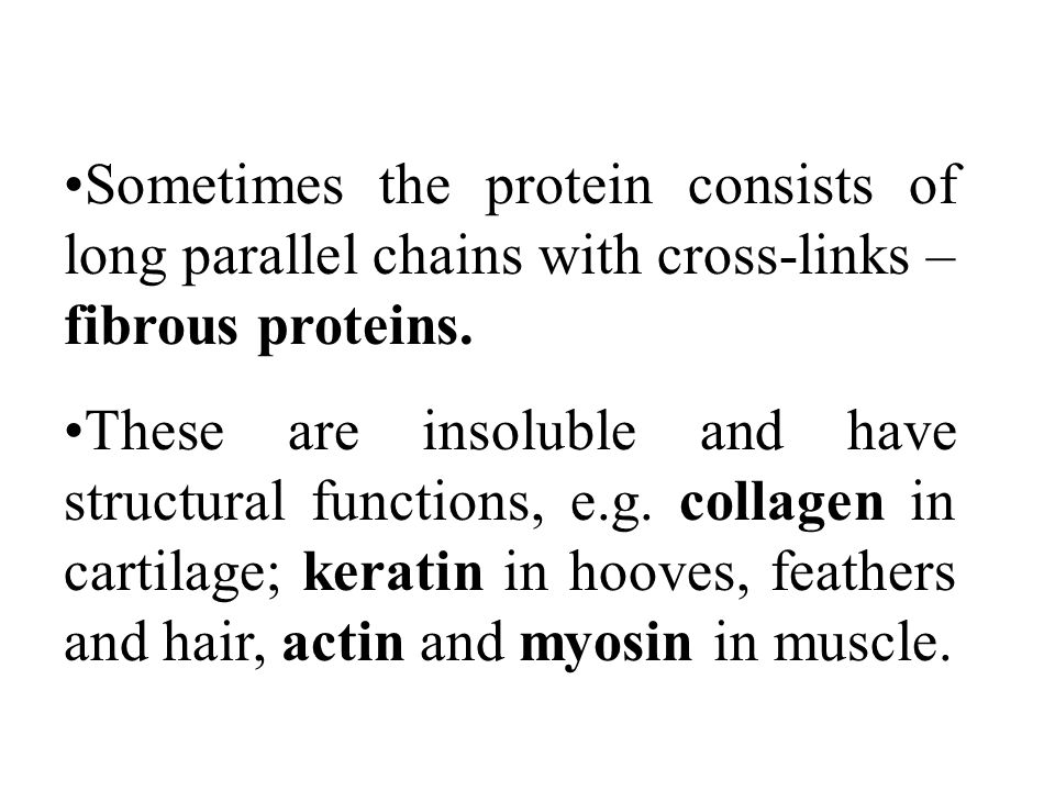 Sometimes the protein consists of long parallel chains with cross-links – fibrous proteins.