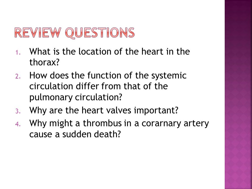 1. What is the location of the heart in the thorax? 2. How does the function of the systemic circulation differ from that of the pulmonary circulation