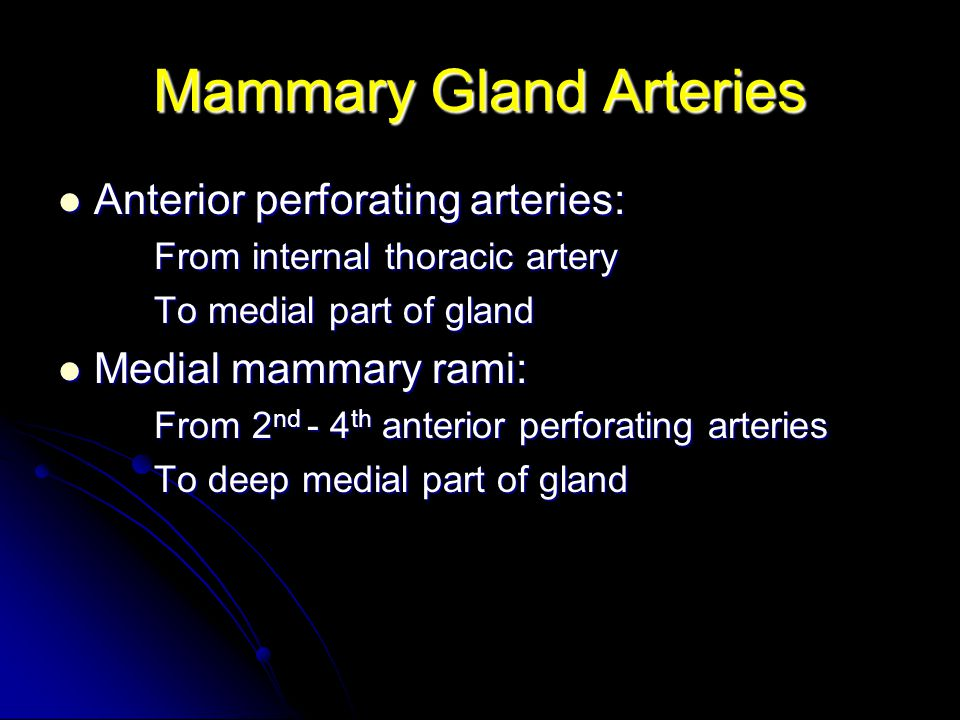 Mammary Gland Arteries Anterior perforating arteries: Anterior perforating arteries: From internal thoracic artery To medial part of gland Medial mamm