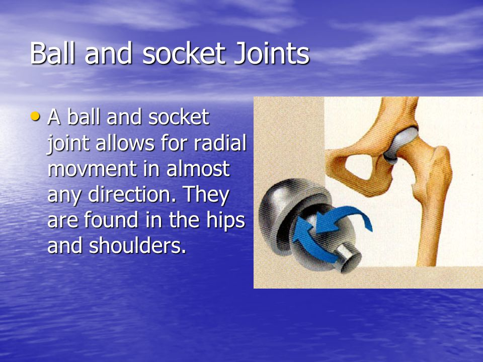 Ball and socket Joints A ball and socket joint allows for radial movment in almost any direction.