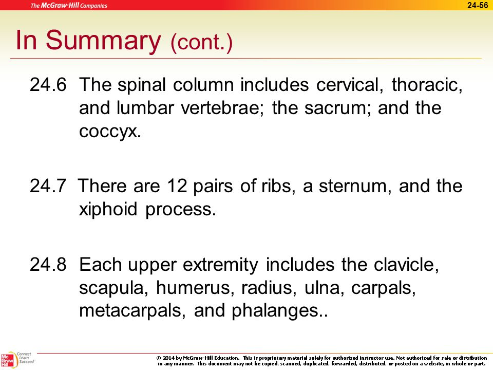 24-55 In Summary (cont.) 24.4 Skeletal structures include the following: condyles, crests, epicondyles, foramina, fossae, heads, processes, sutures, trochanters, tubercles, and tuberosities.
