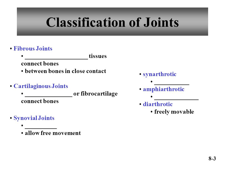 Classification of Joints Fibrous Joints ____________________ tissues connect bones between bones in close contact Cartilaginous Joints _______________