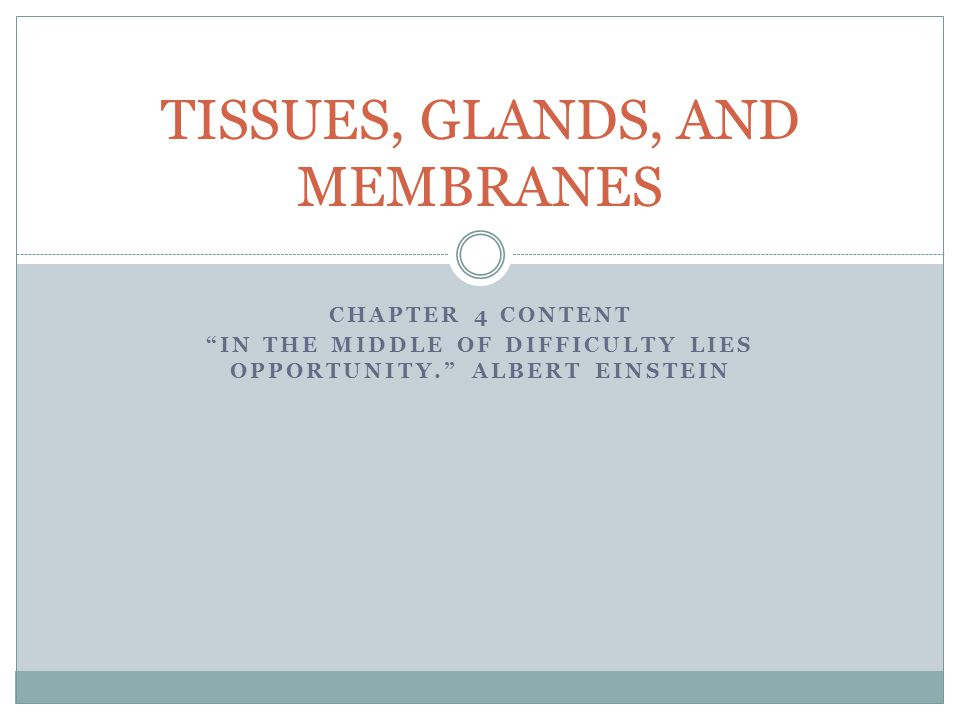 CHAPTER 4 CONTENT IN THE MIDDLE OF DIFFICULTY LIES OPPORTUNITY. ALBERT EINSTEIN TISSUES, GLANDS, AND MEMBRANES