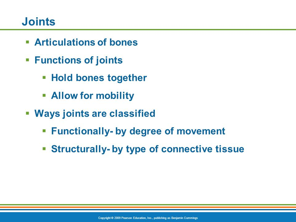 Copyright © 2009 Pearson Education, Inc., publishing as Benjamin Cummings Types of Ordinary Body Movements Figure 6.13b