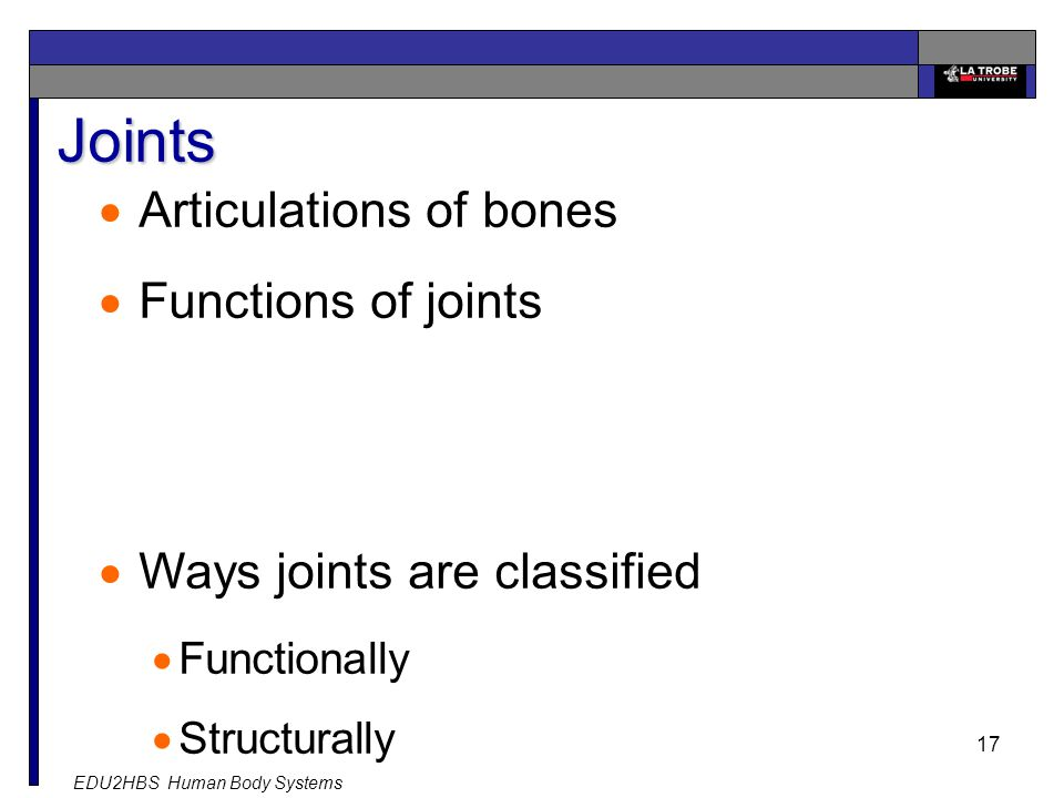 EDU2HBS Human Body Systems 17 Joints  Articulations of bones  Functions of joints  Ways joints are classified  Functionally  Structurally