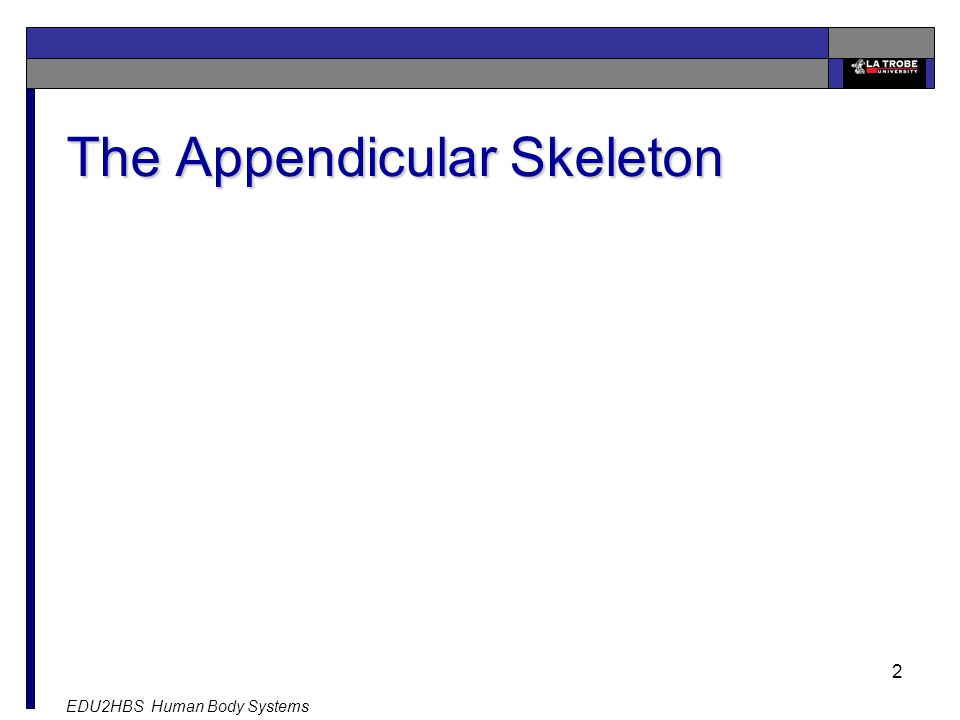 EDU2HBS Human Body Systems 2 The Appendicular Skeleton
